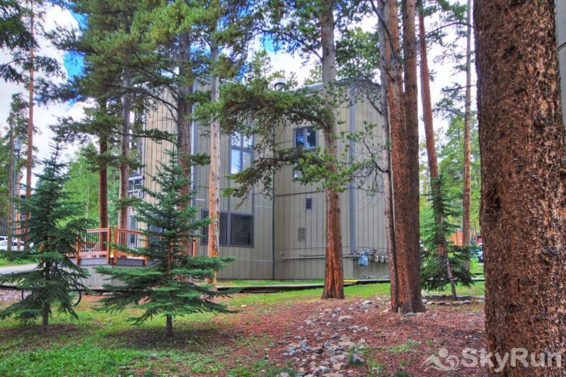 Gold Camp E85 Gold Camp building